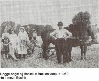 Rogge oogst bij Bosink in Breklenkamp