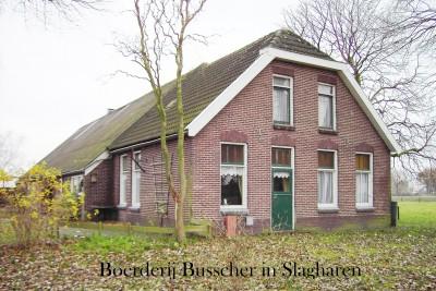 Boerderij Busscher in Slagharen