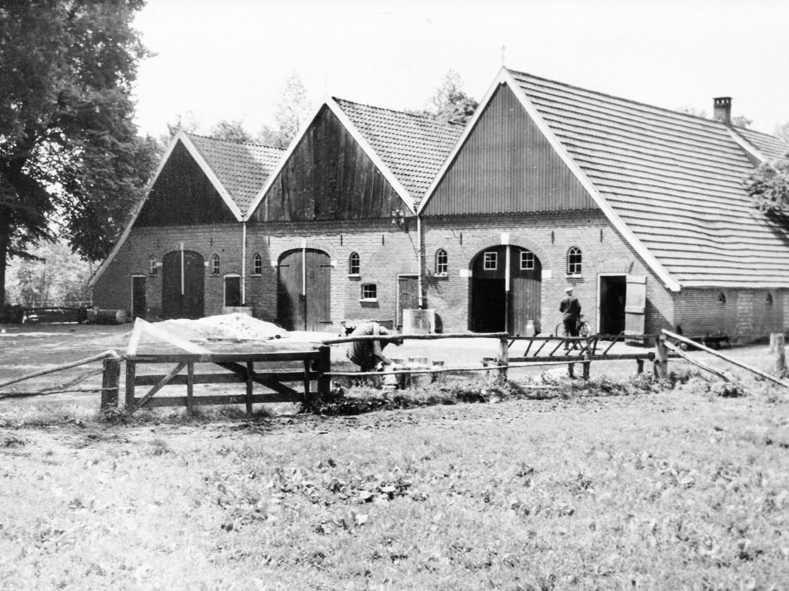 Boerderij met dubbele potstal Tilligte Foto ca. 1950