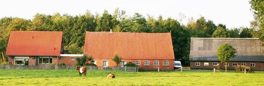 Boerderij met woonhuis en schuur fam Maatman (Oude Dasseler) Lattrop