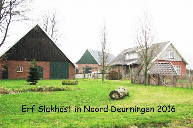 Boerderij Slakhöst Noord Deurningen 2016