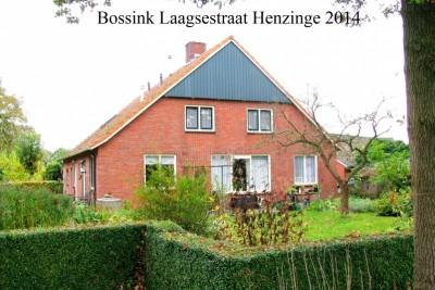 Boerderij Bossink Laagsestraat Hezinge 2014