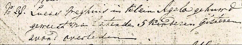 CIV ovl register Denekamp 1806-1811 Lucas Weghuis in Klein Agelo