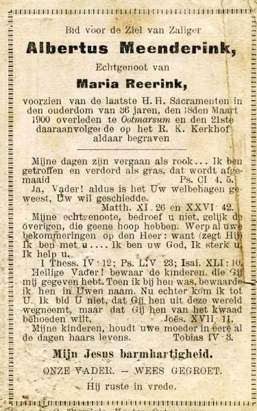 Bidprentje Meenderink Albertus 1864-1900 ev M Reerink