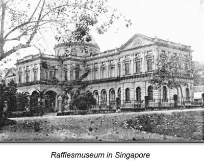 Rafflesmuseum in Singapore