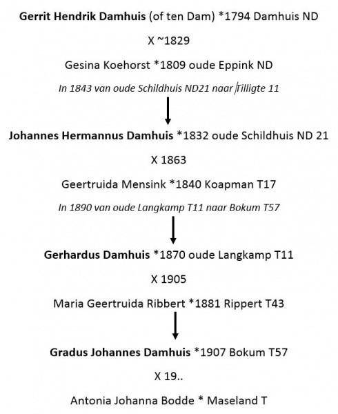 Schema familie Damhuis-Koehorst Tilligte
