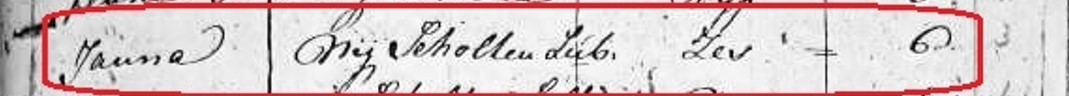 Volkstelling 1795 Nij Scholten Lubberink Lattrop
