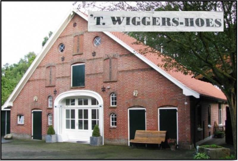 Wiggershoes in Groot Agelo 2016