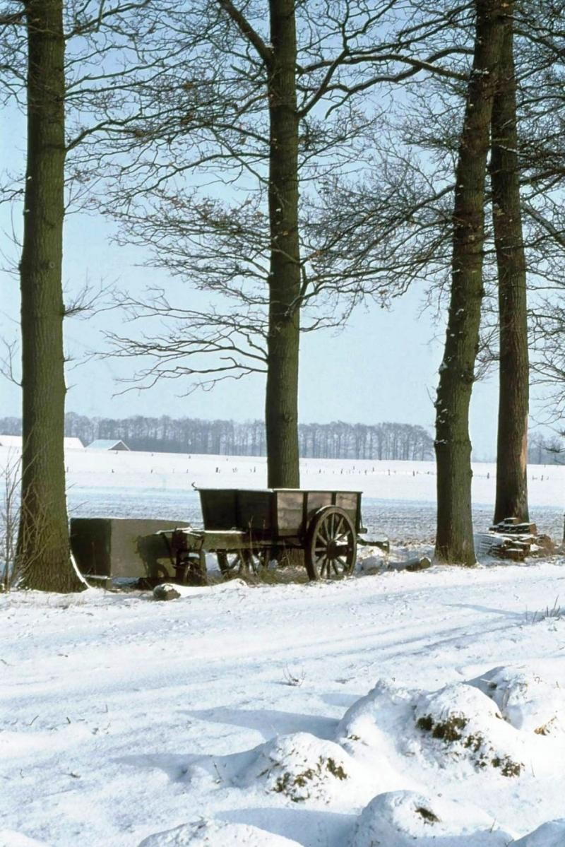 Winter in Breklenkamp